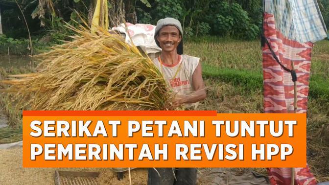 Serikat Petani Indonesia Desak Pemerintah Revisi HPP Gabah dan Beras