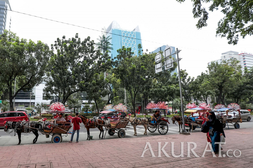 Sisa-sisa Kejayaan Delman Ibu Kota - Foto 12