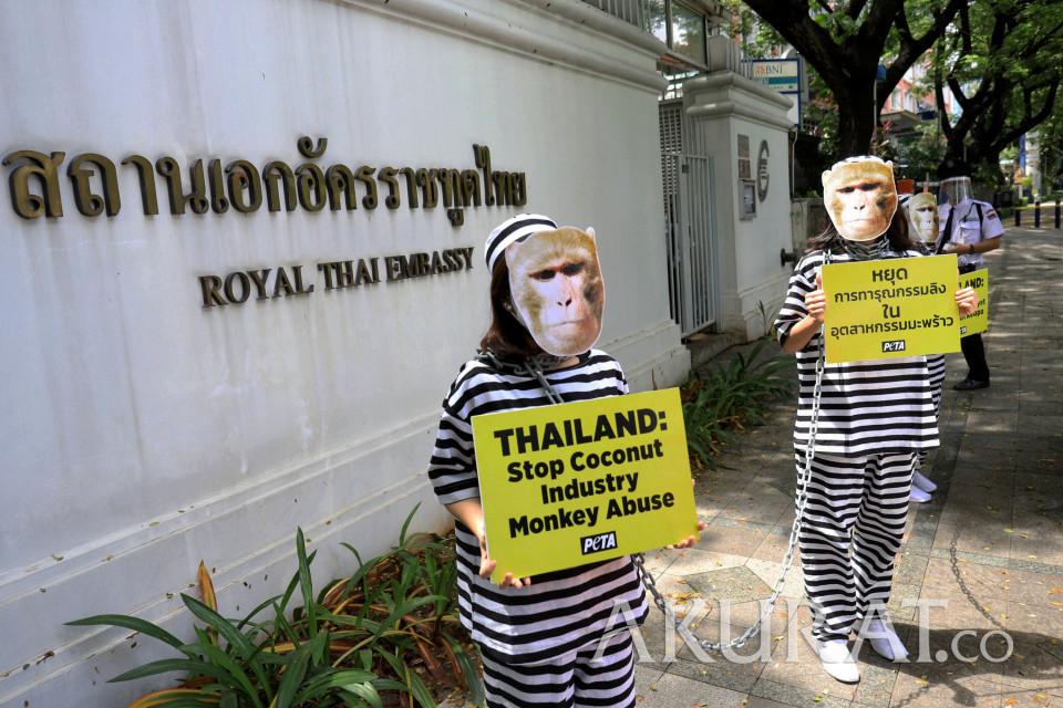 Bertopeng Monyet, Organisasi PETA Gelar Aksi di Kedubes Thailand - Foto 2