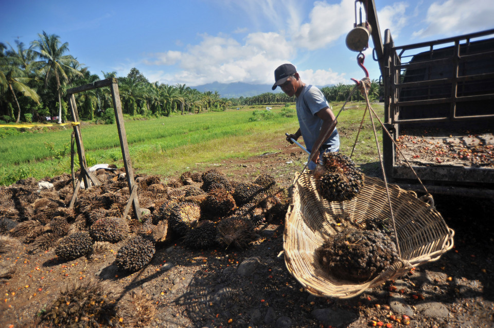 Terobosan Baru Pemerintah Palm 5.0 Solusi Baru Kurangi Gas Metana