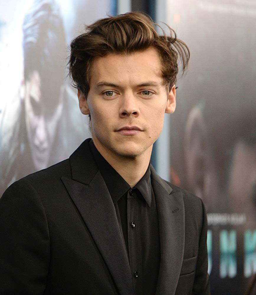 Penggemar Usulkan One Direction Adakan Reuni Virtual, Begini Komentar Harry Styles - Foto 1