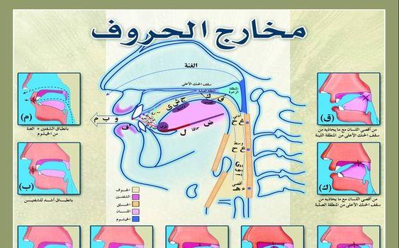 Mengenal Makharijul Huruf untuk Membaca Al-Qur'an Lebih Sempurna