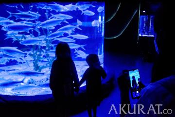 Suasana Wahana Jakarta Aquarium dan Safari Saat Bulan Ramadan