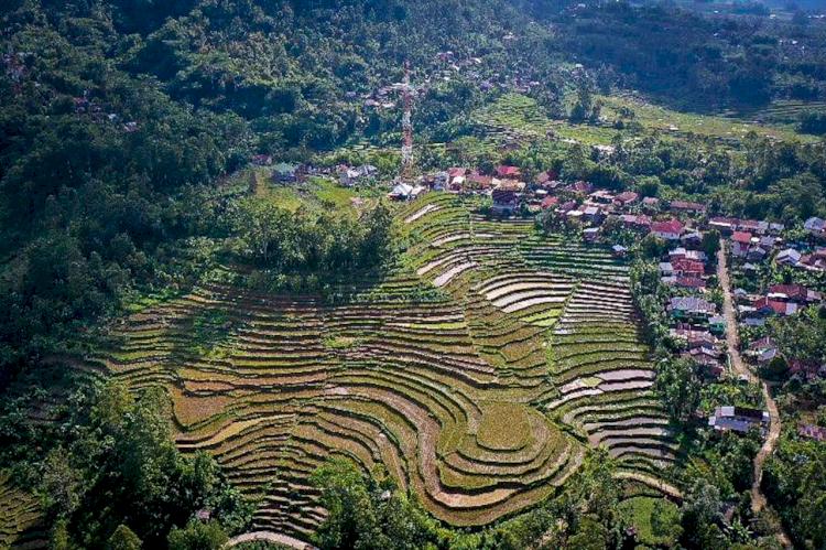 Cantiknya Desa Barania di Sinjai Akan Jadi Spot Ekoturisme - Foto 1