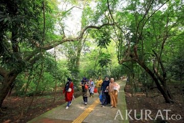 Hutan Kota Srengseng, Wisata Alternatif di Masa Pandemi