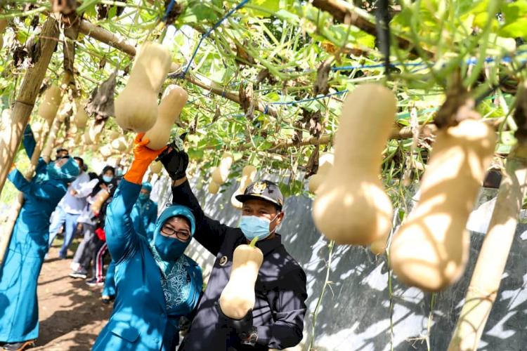 7 Potret Wali Kota Madiun Tangani Pandemi, Berdayakan PKL dan UMKM - Foto 5