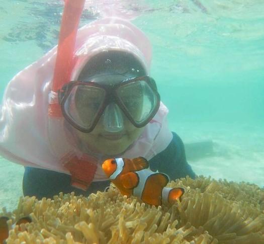 Mau Lihat Ikan Nemo Berliburlah Ke Pulau Tikus - Foto 1