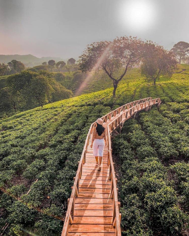 5 Rekomendasi Wisata Di Malang yang Wajib Dikunjungi Saat Liburan - Foto 4
