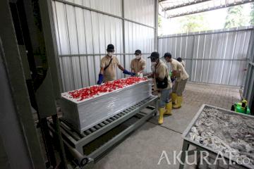 Mengintip Tempat Kremasi Jenazah yang Disediakan Gratis oleh Pemrov DKI