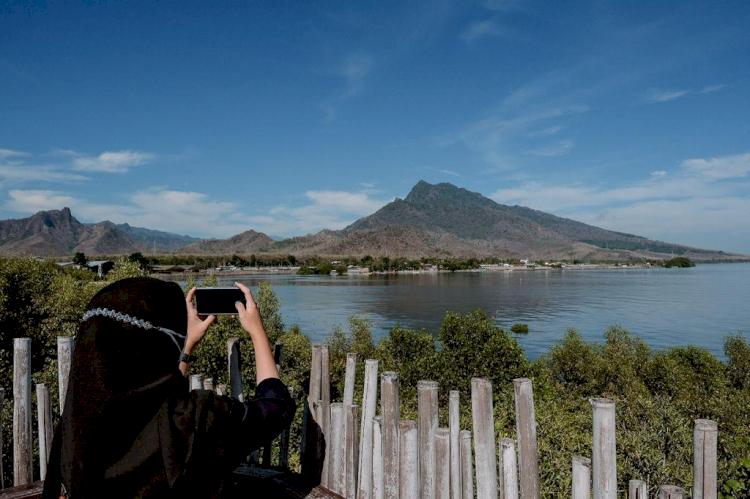 Kampung Blekok Situbondo, Salah Satu Jagoan Ekowisata Indonesia - Foto 1