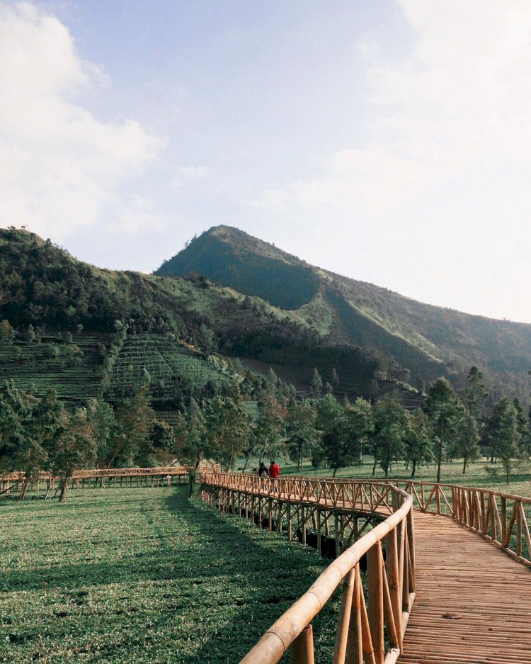 6 Destinasi Wisata di Kabupaten Wonosobo yang Tak Boleh Dilewatkan - Foto 3