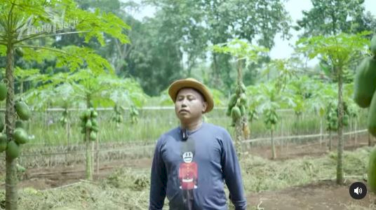 Banting Stir Jadi Petani, 7 Potret Terbaru Komedian Narji - Foto 4
