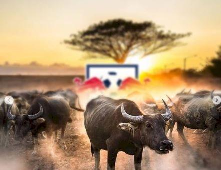 5 Potret Menarik jika Logo Klub Bola Dunia Terlihat Nyata - Foto 2