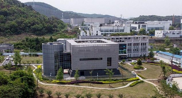 Ilmuwan Ini Jelaskan Eksperimennya di Laboratorium Wuhan yang Dituduh Jadi Penyebab Pandemi COVID-19 - Foto 1