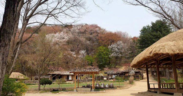 5 Tempat Paling Angker di Korea Selatan, Ada Bekas Rumah Sakit yang Direkturnya Sakit Jiwa - Foto 5