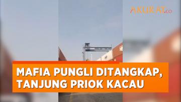 Imbas Tertangkapnya Mafia Pungli, Pelayanan Bongkar-Muat di Tanjung Priok Berantakan