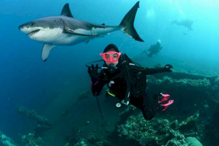 7 Potret Ria Ricis saat Berenang di Laut, Cantik Banget Jadi Putri Duyung - Foto 5