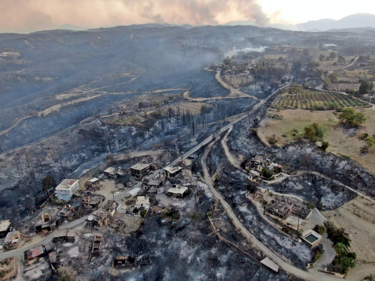 Turki Dilanda Kebakaran Hebat, 3 Tewas, Ratusan Luka-luka, Ribuan Domba Mati - Foto 4