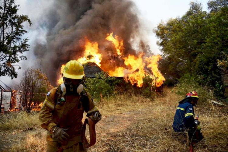 Yunani Hadapi Gelombang Panas Terburuk, Suhu Capai 45 Derajat hingga Picu Kebakaran Hutan - Foto 1