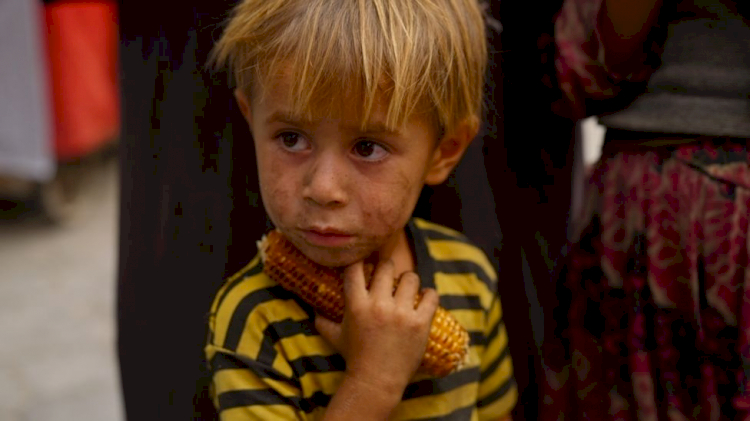 Saya Tidak Mampu Membeli Roto, Potret Warga Afganistan Melawan Kelaparan di bawah Taliban - Foto 4
