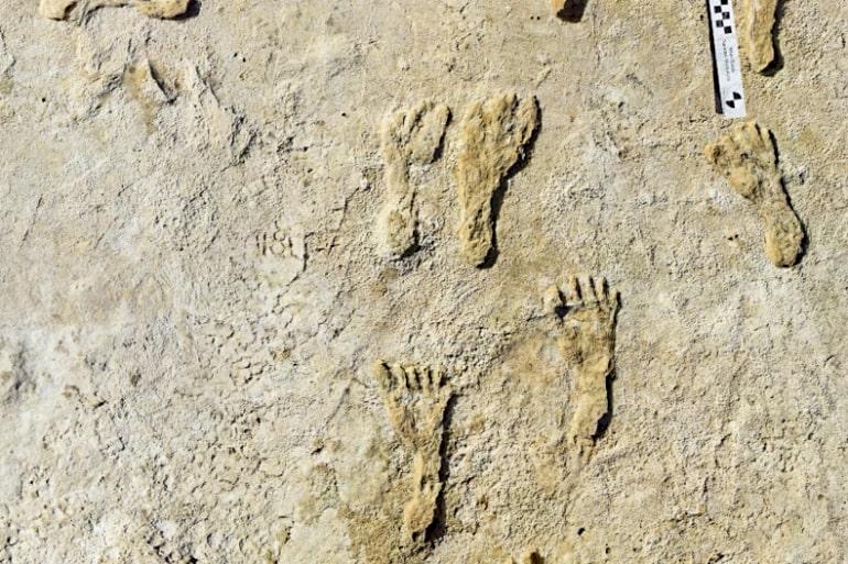 Ditemukan Jejak Kaki Tertua Manusia di Amerika Utara, Usianya Hampir 23 Ribu Tahun